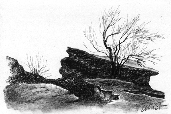 "Yelena Shabrova ~ A sketch a day: rocks and trees ~ charcoal pencil, 6"" x 4"""