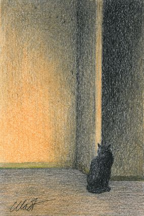 "Yelena Shabrova ~ A sketch a day: cat by the wall ~ colored pencil & China marker, 4"" x 6"""
