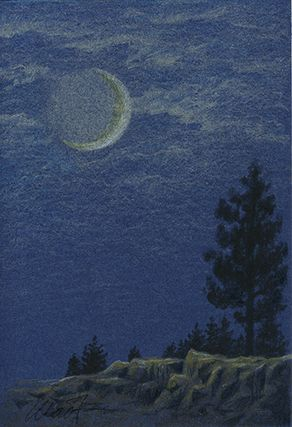 Yelena Shabrova ~ A sketch a day: moonlight, colored pencil ~ pastel pencil, China marker, 4″ x 6″