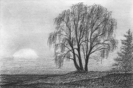 Yelena Shabrova ~ A sketch a day: sunset in black and white ~ charcoal on drawing paper, 6″ x 4″