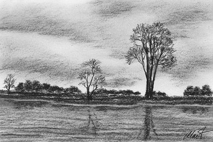Yelena Shabrova ~ A sketch a day: reflections of trees ~ charcoal on drawing paper, 6″ x 4″