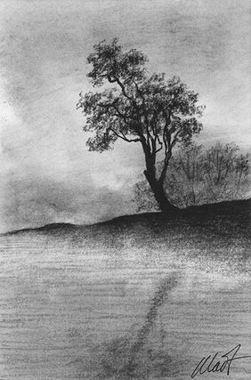 "Yelena Shabrova ~ A sketch a day: steaming pond, charcoal ~ 4"" x 6"""