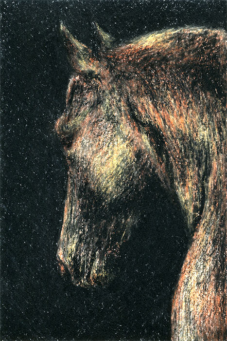 "Yelena Shabrova ~ A sketch a day: horse in the dark ~ China marker and colored pencils, 4"" x 6"""