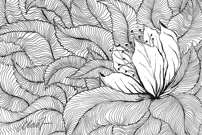 "Yelena Shabrova ~ A sketch a day: decorative pattern ~ pen and ink, 6"" x 4"""