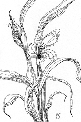 "September 6, 2010 sketch - pen and ink, 4"" x 6"""