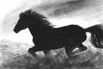 "October 10, 2010 sketch - charcoal, 6"" x 4"""