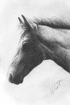 """October 20, 2010 sketch - graphite pencil, 4"""" x 6"""""""