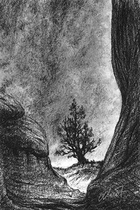 "February 13, 2011 sketch - charcoal, 4"" x 6"""
