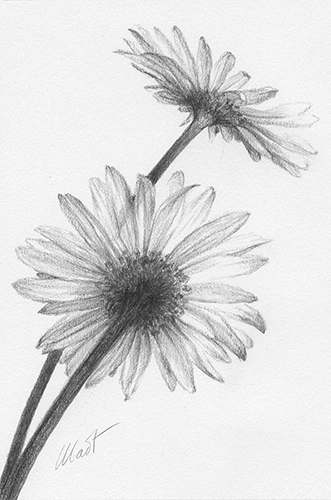 "June 26, 2011 sketch - graphite pencil, 4"" x 6"""