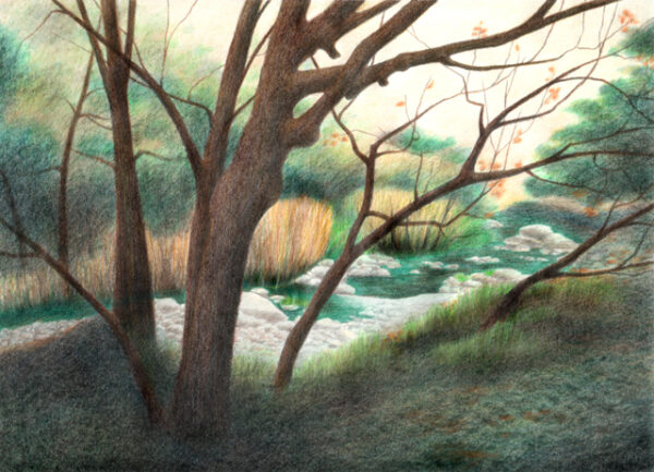 "Alum Rock Park - colored pencil on drawing paper, 11"" x 8.5"""