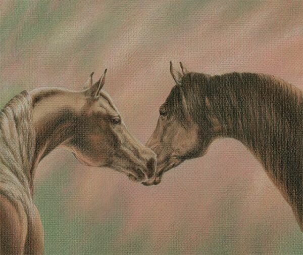 """Bonding - colored pencil on colored paper, 12"""" x 10"""""""