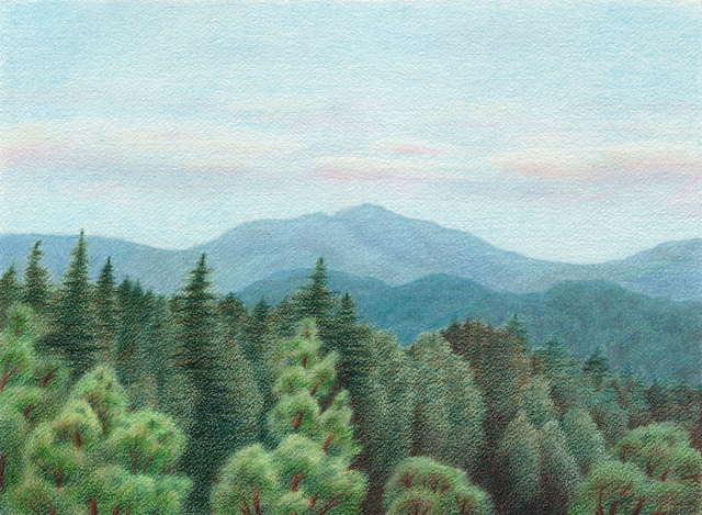 "Summer Day in Santa Cruz Mountains - colored pencil on watercolor paper, 14.5"" x 10.5"""