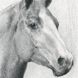 """Watching - China pencil on watercolor paper, 9.25"""" x 12.5"""""""