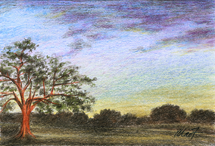 Changing Colors - pastel pencil on drawing paper, 4 x 6