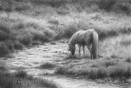 "Sleepy Creek - graphite pencil on drawing paper, 4"" x 6"""