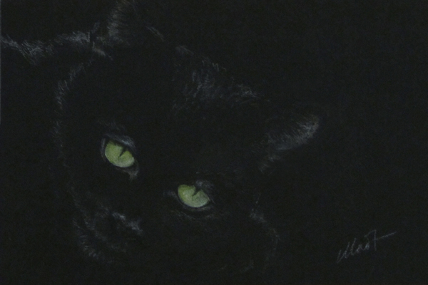 "March 13, 2013 sketch (black cat) - colored pencil on colored paper, 6"" x 4"""