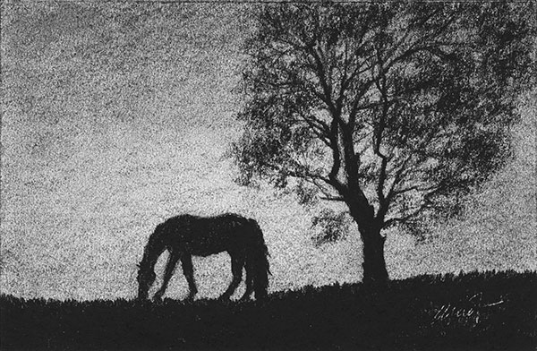 """silhouettes of the grazing horse and a tree - charcoal on drawing paper, 6"""" x 4"""""""