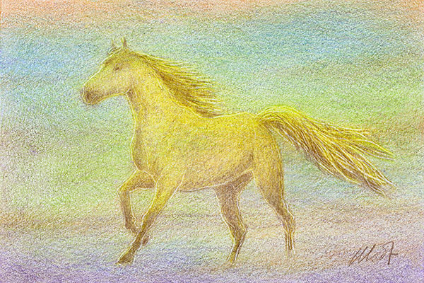 "sketch of a running horse - colored pencil on drawing paper, 6"" x 4"""
