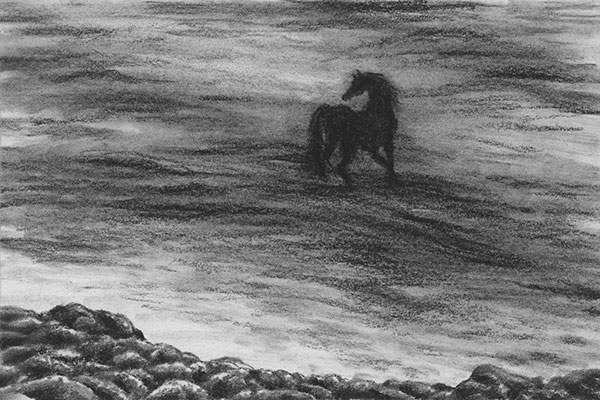 "A sketch a day: horse in the water ~ Derwent charcoal pencil on Canson drawing paper, 6"" x 4"""