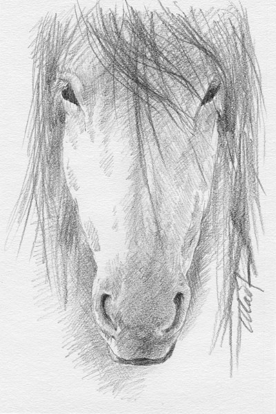 "A sketch a day: bad hair day - graphite pencil on Canson drawing paper, 4"" x 6"""