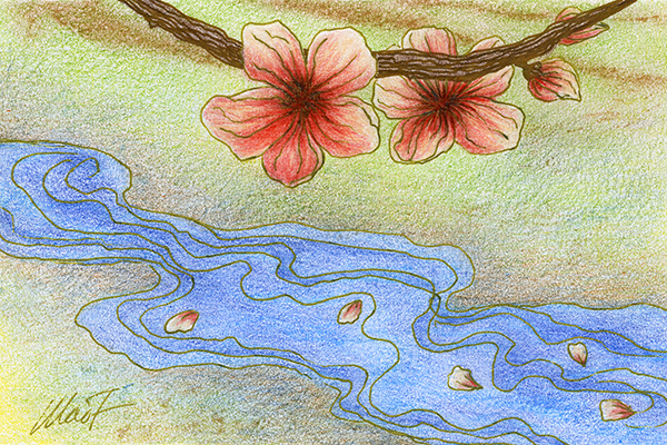 "Yelena Shabrova ~ A sketch a day: petals in a stream ~ colored pencils on Canson drawing paper, 4"" x 6"""