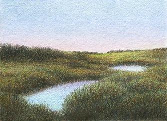 "Yelena Shabrova ~ marsh after sunset - ATC ~ colored pencil, 3.5"" x 2.5"""