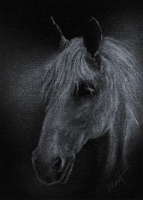 "Yelena Shabrova ~ Ghostly White ~ white colored pencil on canvas board, 5"" x 7"""
