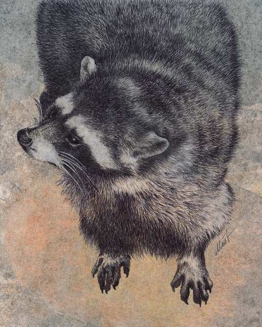 "Yelena Shabrova ~ Explorer ~ mixed media on canvas panel, 8"" x 10"" (raccoon)"