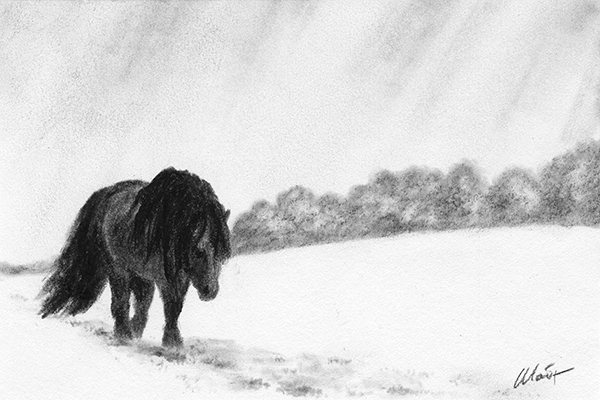 """Yelena Shabrova ~ A sketch a day: horse in the snow ~ Derwent charcoal pencil on Canson drawing Paper, 6"""" x 4"""""""