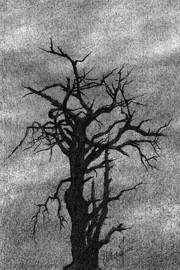 "Yelena Shabrova ~ All That Remains ~ Derwent Dark charcoal pencil on Canson drawing paper, 4"" x 6"""