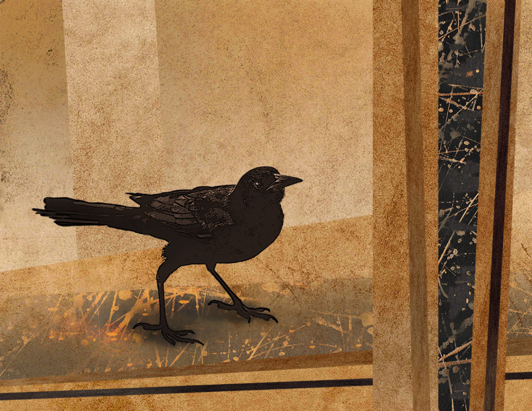 Digital collage with a blackbird ~  ArtFlow and Painter (both are Android drawing apps) and Photoshop