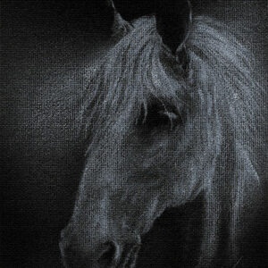 """Yelena Shabrova ~ Ghostly White ~ white colored pencil on canvas board, 5"""" x 7"""""""
