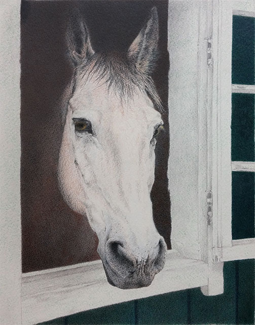 "Yelena Shabrova ~ Hello (work in progress) ~ colored pencil on Strathmore watercolor paper, 11"" x 14"""