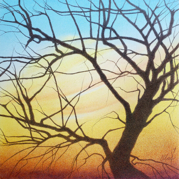 Colored pencil of a bent bare tree with colorful sunset clouds