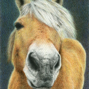 Yelena Shabrova ~ Character ~ colored pencil, 12 x 16 cm