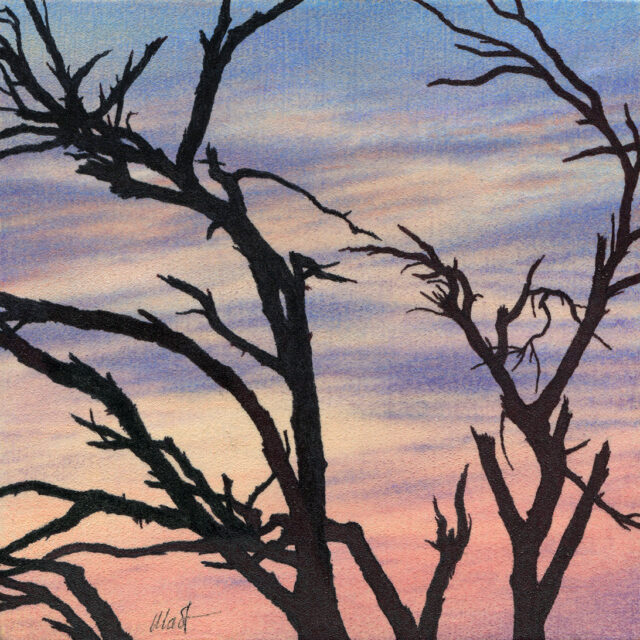 Drawing of a bare tree silhouette against sunset skies with light clouds and pastel colors