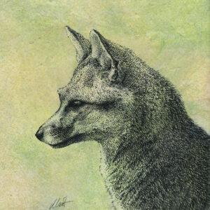 """Yelena Shabrova ~ Oregon Wildlife. Gray Fox ~ mixed media on canvas, 8"""" x 8"""""""