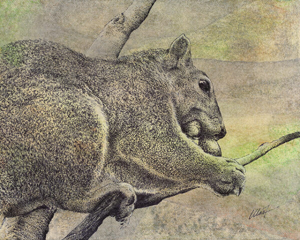 """Yelena Shabrova ~ Muncher ~ mixed media on canvas panel, 8"""" x 10"""" (original drawing of a squirrel)"""