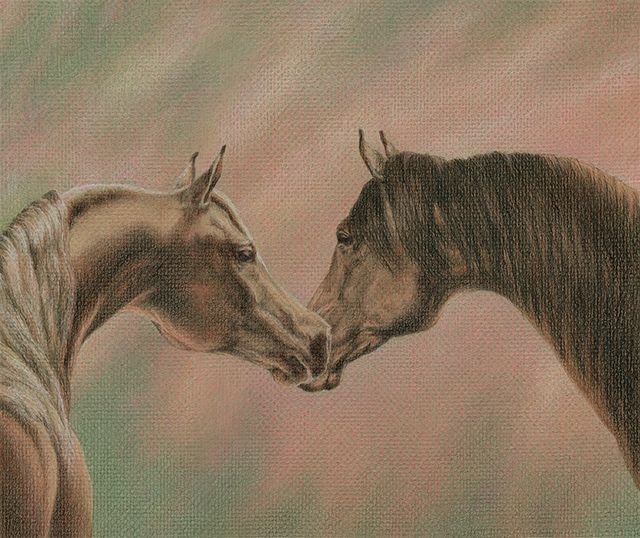 "Yelena Shabrova ~ Bonding - colored pencil on colored paper, 12"" x 10"""