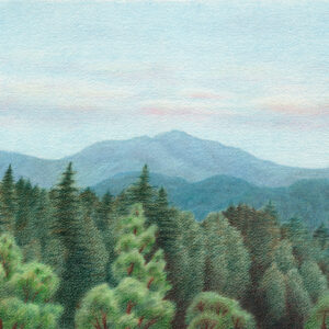 "Summer Day in Santa Cruz Mountains - colored pencil on Arches watercolor paper, 14.5"" x 10.5"""